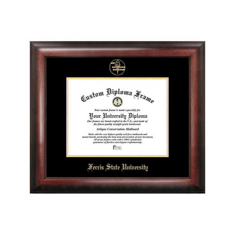 MI979GED-1185: Ferris State University 11w x 8.5h Gold Embossed Diploma Frame